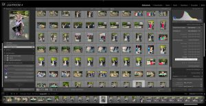 Lightroom Bildoptimierung